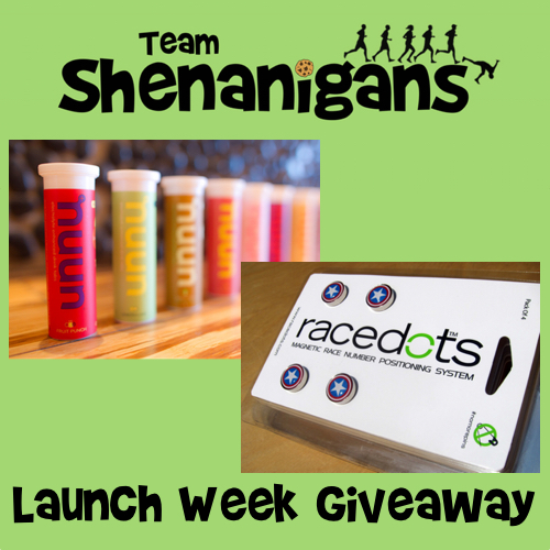Team Shenanigans Launch Week Giveaway